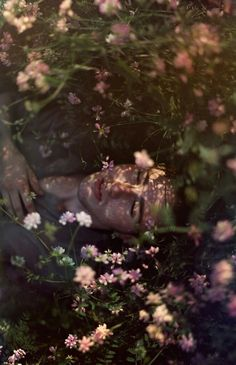 Read from the story Fotos Para Portadas by escritosYMSR (Y. Story Inspiration, Character Inspiration, 3d Fantasy, Flower Boys, Faeries, Art Inspo, Art Reference, Portrait Photography, Flower Photography