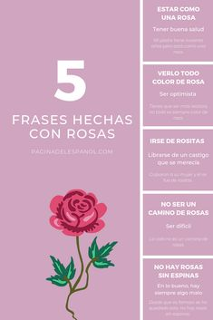 Spanish proverbs and idioms Spanish Teacher, Teaching Spanish, Spanish Idioms, Free Spanish Lessons, Idioms And Proverbs, Color Rosa, Learning, Day, Spanish