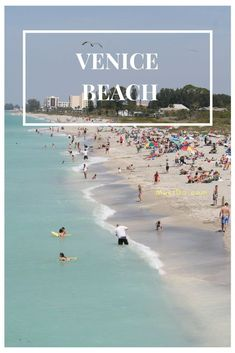 Venice Beach in Venice, Florida is a favorite beach spot for locals as well as divers who come for its coral reef which is located a quarter-mile offshore. Like many of the Venice area beaches, you have a good chance of finding sharks teeth washed up on shore. #sharksteeth #venicefl #vacation #florida #beaches