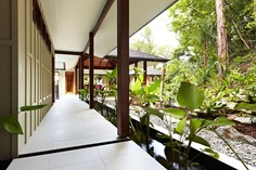 Chris Vandyke Designs.  Rainforest Pole House, Far North QLD.  LET US INSPIRE YOU ~ DREAM, CONCIEVE, CREATE YOUR DREAM HOME. www.ecojumrum.com the ultimate rural residential land release in North Queensland.