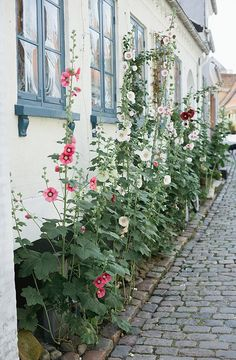 old town of aeroeskoebing, denmark. photo by camilla jorvad