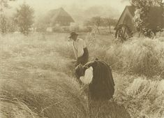 Early Morn (photo by Alfred Stieglitz Alfred Stieglitz, History Of Photography, National Gallery Of Art, Art Institute Of Chicago, Museum Of Fine Arts, Black Forest, Moma, Vintage Photographs, Metropolitan Museum