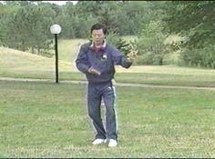 Moy Lin Shin 108 movimientos de Tai Chi Taoista. on Vimeo