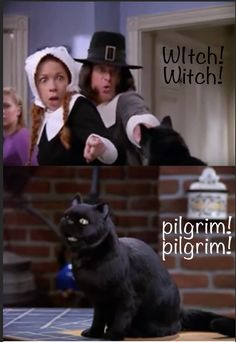 """On pilgrims: Here Are The 100 Funniest """"Sabrina The Teenage Witch"""" Moments Of All Time Witch Jokes, Salem Cat, Salem Saberhagen, Teen Witch, Sabrina Spellman, Archie Comics, Funny Relatable Memes, Pilgrim, Fun Facts"""