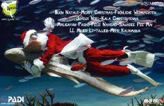 Tutto Lo staff di Aquademy 4Sub Augura un Buon Natale e Mille Bolle a tutti.................... (Credits Shizuo Kambayashi)