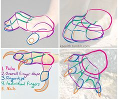 Art Tutorials and References — kaenith: @lunardeercat My go-to advice for any...