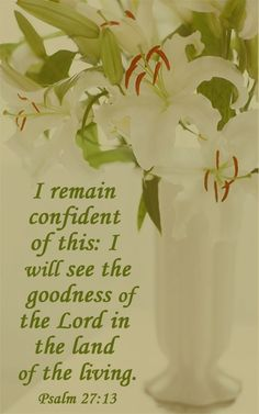 """""""I remain confident of this: I will see the goodness of the Lord in the land of the living."""" ~ P{salm 27:13"""