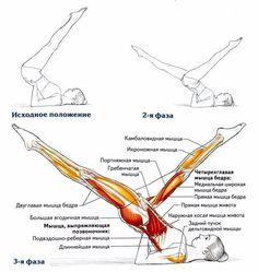 Многофункциональное упражнение! #тренировка@fitness.blog