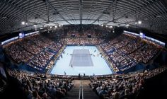 Swiss Indoors Basel - RF one away Basel, Indoor Tennis, Tennis Elbow, Women's World Cup, Sports Wallpapers, Sports News, Switzerland, Cover, Basketball Court