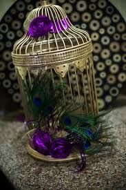 Bird cage with Peacock Feathers