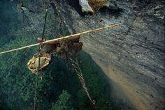 himalayan honey hunters | Nepal's honey hunters on Himalayan cliff