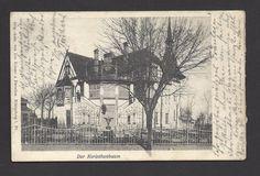 Königsberg / Ostpreussen, Der Korinthenbaum ,gel.1903 Poststempel Mittelhufen