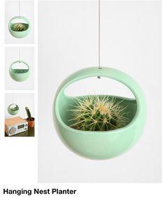 :) I want pretty plants