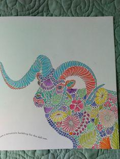 Pencils KM Millie Marotta Animal Kingdom Ram