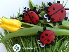 Ladybug from stone / Beruška z kamínku. Bug Crafts, Ladybug, Watermelon, Activities For Kids, Printables, Crafty, Christmas Ornaments, Holiday Decor, Handmade