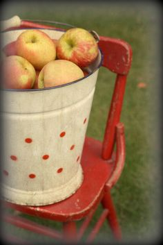 """Apples"" by lucia and mapp on Flickr - Apples"