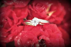 This is the Michael Hill engagement ring my fiancé got me :)