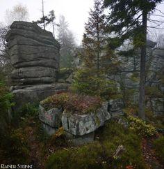 Burgruine Schellenberg im Oberpfälzer Wald