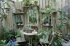 "junk garden..""Windows"" in the fence. Great use of shutters, shelves and mirrors"