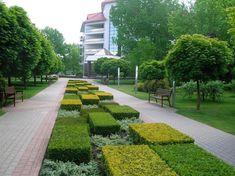 городские парки европы: 2 тыс изображений найдено в Яндекс.Картинках Planting Shrubs, Planting Plan, Landscaping Plants, Outdoor Landscaping, Green Architecture, Landscape Architecture, Urban Landscape, Landscape Design, Modern Planting
