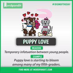Idiom of the day: Puppy Love Slang English, Learn English Grammar, English Writing Skills, English Idioms, English Phrases, Learn English Words, English Lessons, English Conversation Learning, Interesting English Words