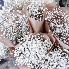 Thursday Inspo // 8 - Bella to Bella: Babies Breath, Flowers, Pretty