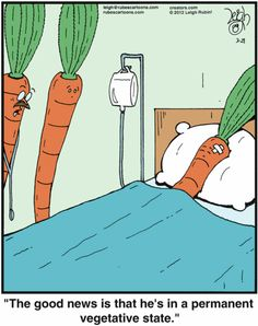 Rubes: When being in a vegetative state is a good thing | #vegetable #humor #comics