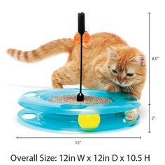 Kitty City Swat Track Cat Toy 3 Toys in 1 Cat Toy for Cat and Kitty ** Discover more by visiting the photo link. Photo Link, Cat Scratching, Swat, Cat Toys, Pet Supplies, Kitty, Pets, Track, Little Kitty