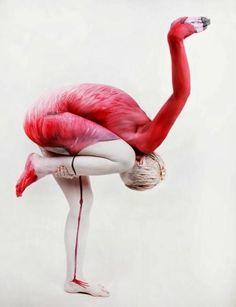 Flamingo stance