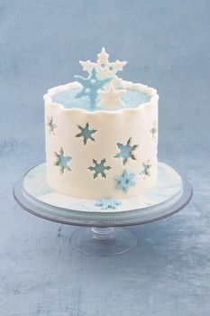 Winter Wonderland Cake Tutorial - Cake Projects