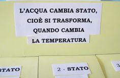 Studiamando liberamente: Lapbook: L'acqua Camilla, Coding, Cards Against Humanity, Geography, School, Environment, Programming
