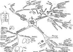 Acute Lymphoblastic Leukaemia mind map, ALL