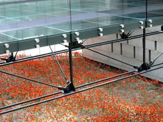 Poppies have been the symbol of those who have served and died at war since WWI, where poppies flourished in the battlefields of France, the site of trench warfare. Poppies thrived on the nitrites of explosives. War deaths totaled 9,000,000. Each of the 9000 museum poppies represents 1000 souls who lost their lives during WWI.