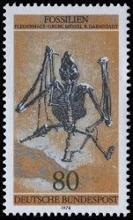 Germany, 1978, Fossils from the Messel Pit, Bat