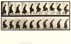 Animal Locomotion | Eadweard Muybridge