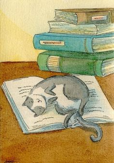 illustrator - Nicole Wong Pinzellades al món: Dones, gats i llibres / Mujeres, gatos y libros / Women, cats and books Just what my cat does everytime I am lying on the floor with a book. I Love Cats, Crazy Cats, Cute Cats, I Love Books, Good Books, Illustration Mignonne, Image Chat, Reading Art, Cat Drawing