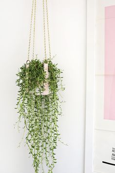 Hanging Leather Strap Planter DIY | A Beautiful Mess | Bloglovin'