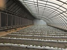Wageningen UR gets a Chinese solar greenhouse