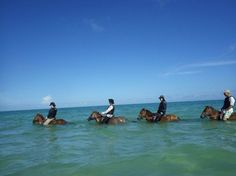 Umikaze Horse Farm, Nanjo Picture: 二人は、初めての乗馬です~ - Check out TripAdvisor members' 3,035 candid photos and videos of Umikaze Horse Farm