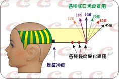 髮片劃分(4)--縱髮片的介紹/黃思恒 -HairSalon沙龍網 時尚專欄