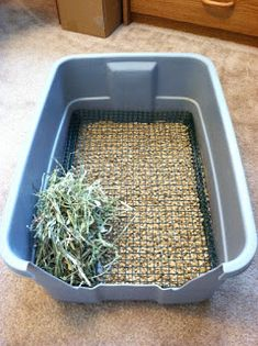 Pigs n Buns Small Pet Rescue: Non-diggable Bunny Litter Box Rabbit Litter Box, Rabbit Toys, Pet Rabbit, Bunny Toys, Litter Pan, Small Rabbit, Bunny Cages, Rabbit Cages, House Rabbit