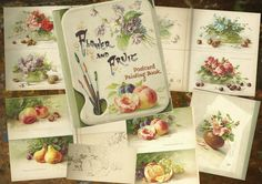 Flower and Fruit Postcard Painting Book by C. Klein.(1861-1929)