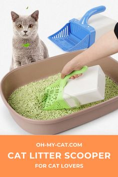 Have You Ever Dreamt Of Cleaning Your Cat Litter Box With just A Tilt of A Wrist ? It makes it Easy to clean your litter box by putting waste inside an Integrated bag ! Cat Products, Little Kitty, Cat Accessories, Litter Box, Tilt, Cool Cats, Cat Lovers, All In One, Cleaning