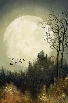 Lisel Ashlock, Hunter's Moon