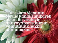Tüm İslam Aleminin Mevlid Kandili mübarek olsun. Bu vesileyle dünyaya barış, huzur ve mutluluk hakim olur umarım. #kandil #mevlitkandili
