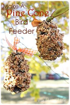 Pine Cone Bird Feeder---I want to do this with Parker but am always concerned how a bird will be able to eat the seed while trying fly in mid-air.  Am I think about this too much??!!
