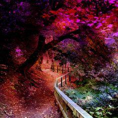 The Enchanted Dell Edinburgh, Scotland, (by J. A. King)