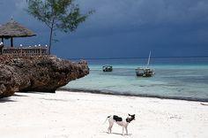 Nungwi, island of Zanzibar, territory of Tanzania