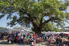 Reinvestment – World Famous Blue Crab Festival