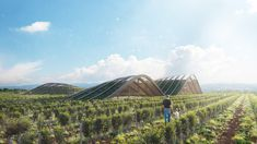 X-Architecture Create Wine Tasting Space Within A Geothermal Context — Visual Atelier 8 Land Art, Caves, Bodega Hotel, Landscape Architecture, Architecture Design, Organic Architecture, Green Architecture, Georgia, Behance